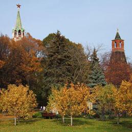 Куда пойти в Москве на выходные 14-15 ноября